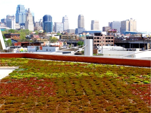 Boulevard Greenroof by Jeffrey L. Bruce & Company