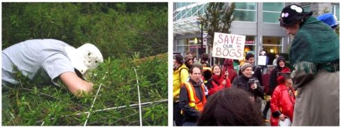 "Left: Doing vegetation surveys in Burns Bog (B.C.), June 2007; Right: Representing bogs alongside Raging Grannies at ""Hello Al, Goodbye Gateway"" Rally in Vancouver, 2007."