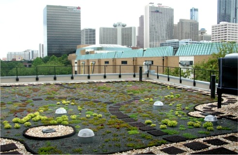 The Southface Eco-Office Greenroof in late May, 2009: Photo by LSV