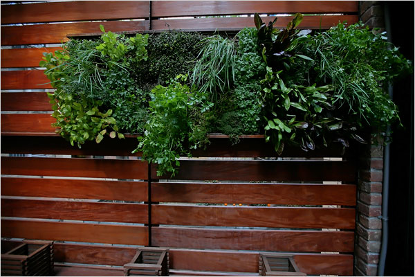 A close-up of the Zizmor Green Wall by James Rajotte of NYTimes.com