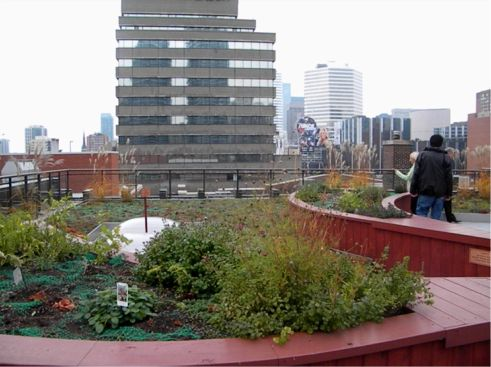 The Covenant House Greenroof