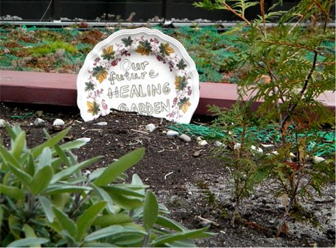 Covenant House Toronto's Hope: Our Future Healing Garden