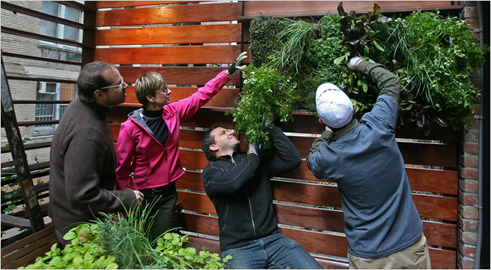 Owner Bradley Zizmor and designer Kari Elweell Katzander working on the installation of the