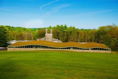 Hotchkiss School Biomass Facility Plant; Photo Courtesy of Apex Green Roofs