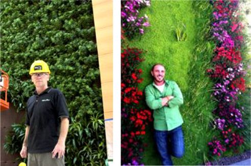 of Two Hydroponic Living Wall Systems from Canada and Spain