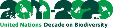 CT-UN Decade on Biodiversity