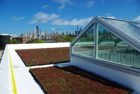 McGrath Acura Car DealershipGreenroof first installed in April, 2012; Photo Courtesy of Vegetal i.D.