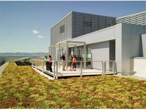 Greenroof project of the week for july 8 2013 u s epa for Environmental management bureau region 13