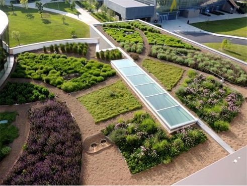Greenroof Project Of The Week For August 19 2013