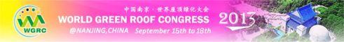 2013WGRC-Nanjing