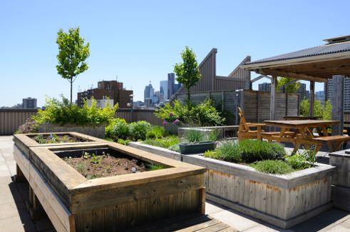 Creative Diy Green Rooftops For Renters