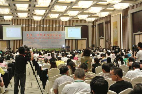 Nanjing2013Audience