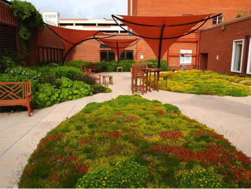 Greenroof Project Of The Week For January 27 2014