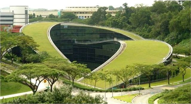 Video Amp Project Of The Week For July 28 2014 Nanyang