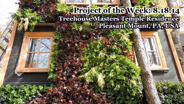 GPW-TreehouseMasters-081814