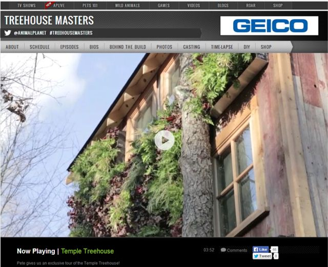 TreehouseMastersClip1
