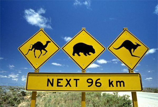 content-campaign-WGIC2014-WildlifeSign
