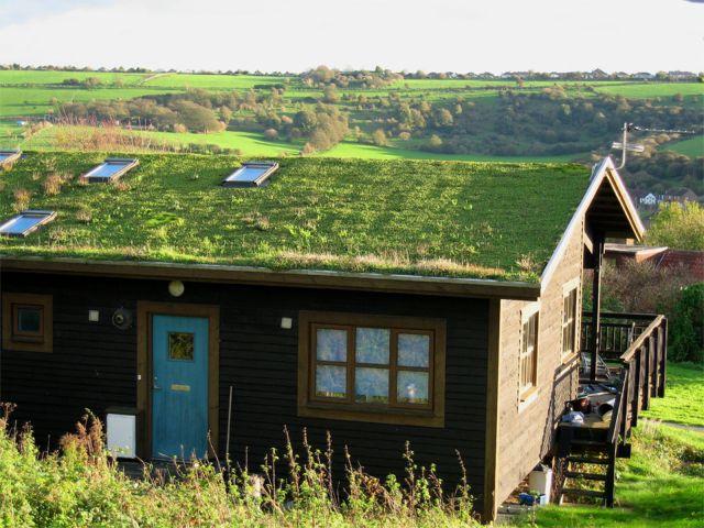 LisaPreston-green_roof1