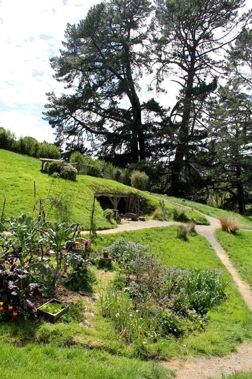 Hobbiton-LSV-102114-GardenandPineTree
