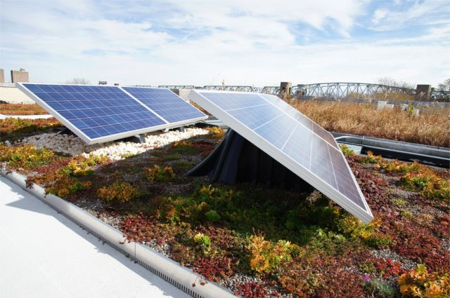VS2013-GreenRoofsandSolar
