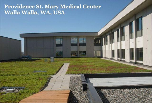 VS2015-LizHart-ProvidenceSt.MaryMedicalCenter