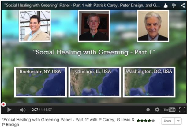 Virtual Summit 2015 Video Social Healing Greening Carey Ensign Irwin