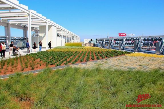 Project of the Week Levi's Stadium