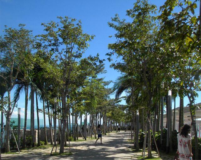 Marina-Bay-Sands-SkyPark6
