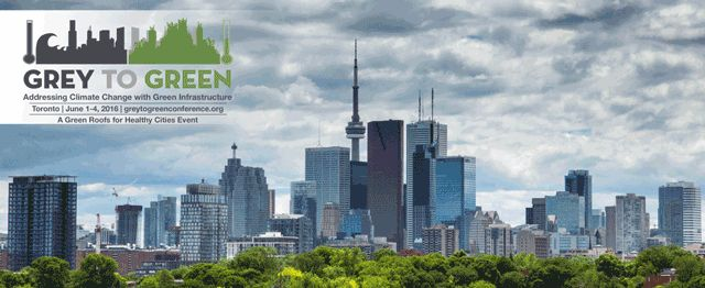 Green Infrastructure Ontario Coalition Report Urban Forest in GTA