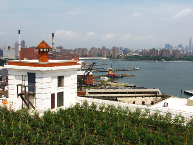 Project of the Week Brooklyn Grange Farm #2 Navy Yard