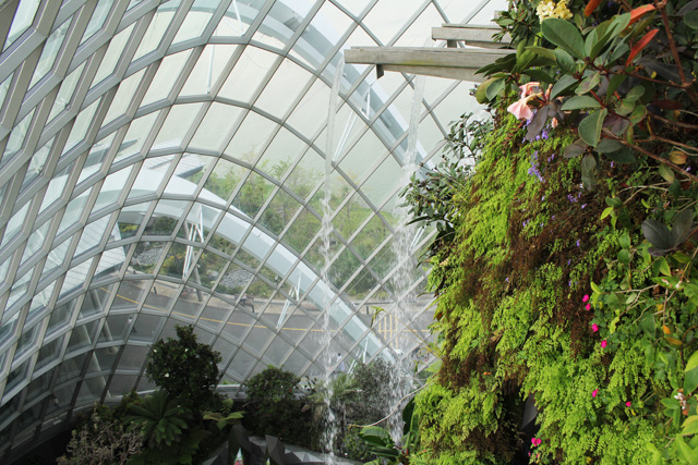 Project of the Week Gardens by the Bay Cloud Mountain