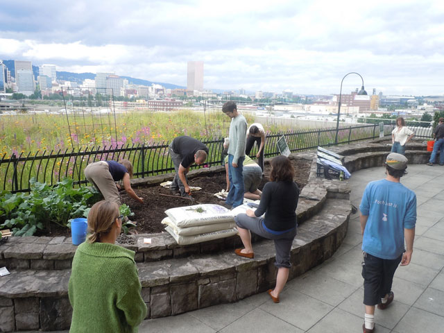 Project of the Week Amy Joslin Eco Roof Multnomah Building