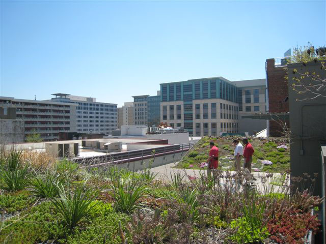 Project of the Week American Society Landscape Architects Headquarters