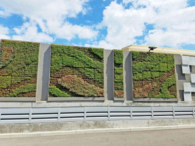 Project Week Yahoo! Commuting Coop Living Wall Lockport