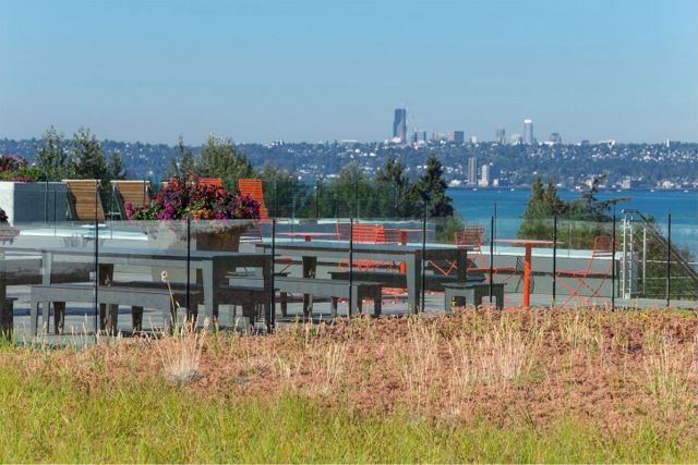 Project of the Week SRM Development Kirkland WA