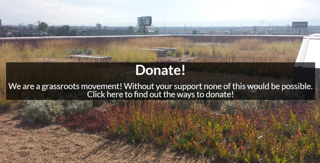 Support Denver Green Roof Initiative Brandon Rietheimer