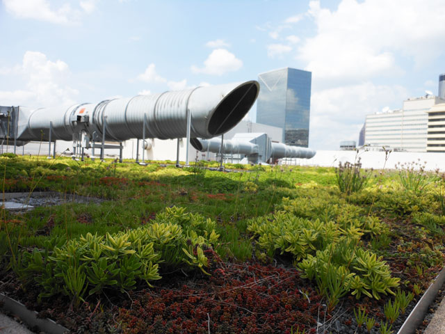 Greenroofs.com Project Week Sam Nunn Atlanta Federal Center