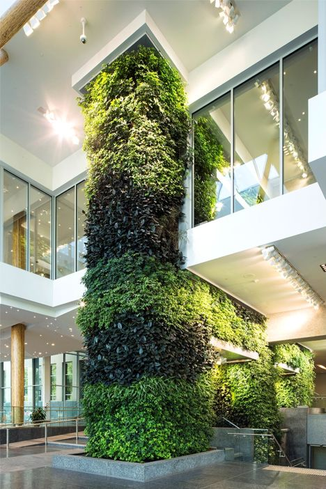 Gpw edmonton federal building living wall - Building a living wall ...