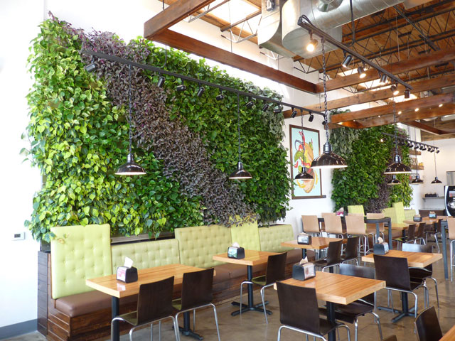 Green Walls Extend Green Welcome Brome Restaurants Guests Ponce Aquilina