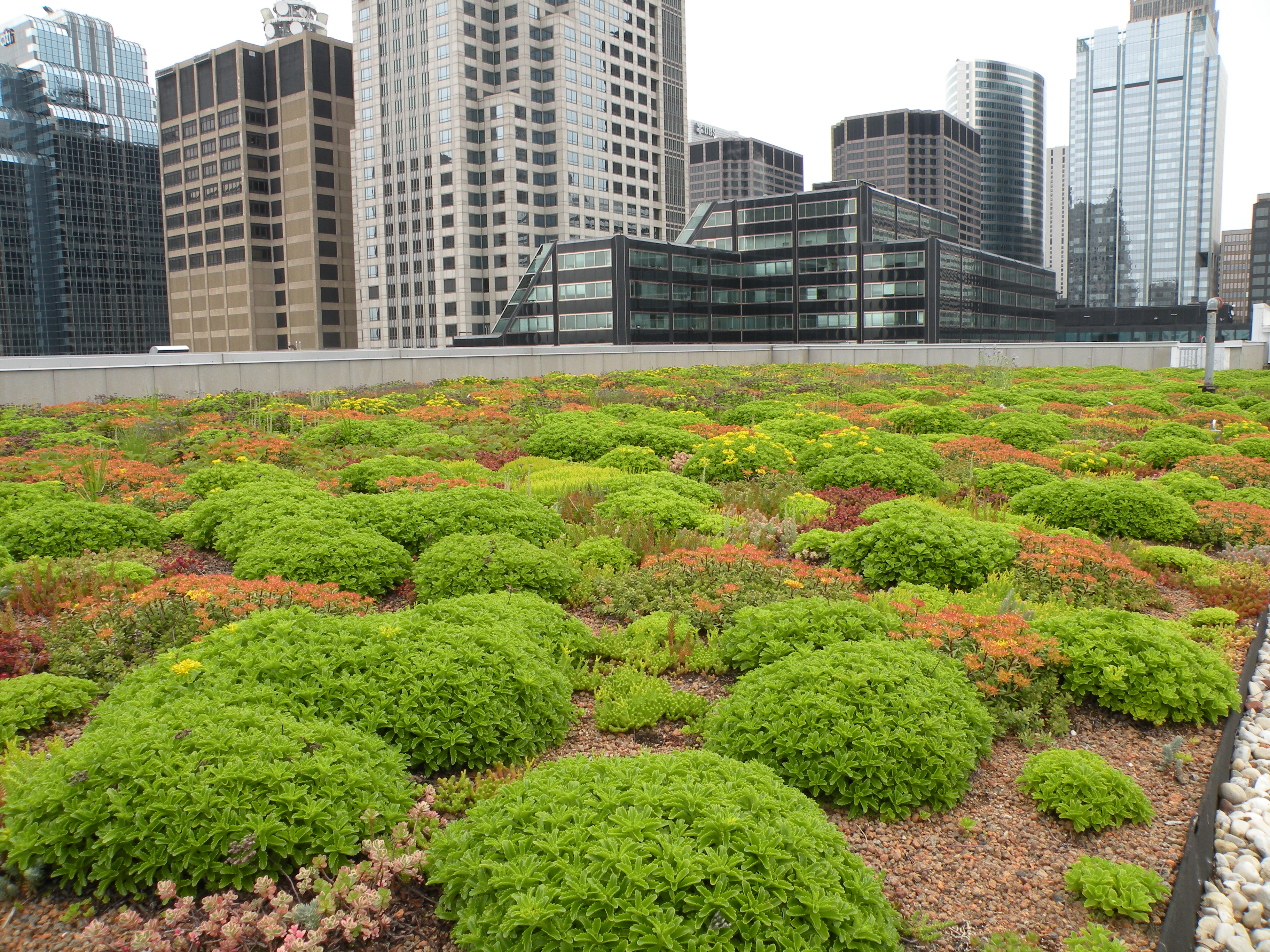 American Hydrotech Inc Greenroofs Com