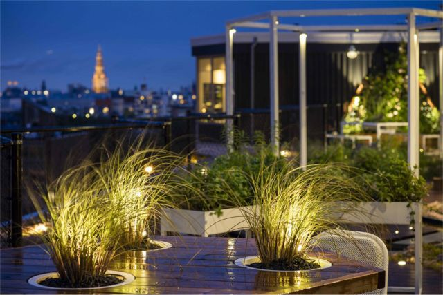 Greenroofs.com Project Week October 9 2017 Zoku Metropool Roof Garden