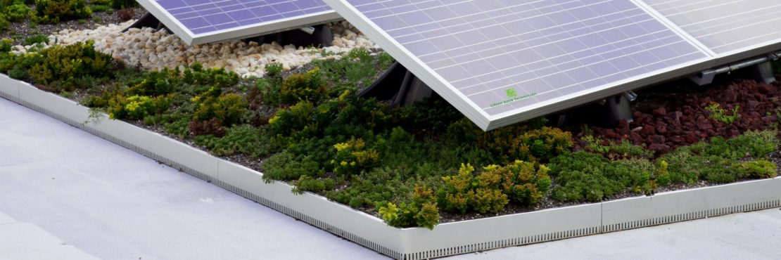 Green Roof Technology Featured Image