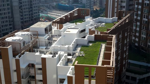 Greenroofs.com Project Week HDB BLK 667B Singapore
