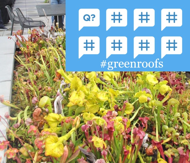 #TheGlobalGrid #Greenroofs Twitter Chat Save the Date April 18, 2018