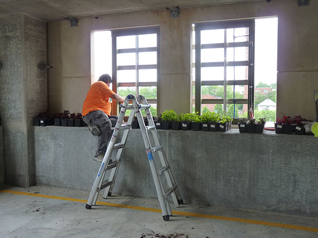 Greenroofs.com Project Week Monroe County Parking Garage
