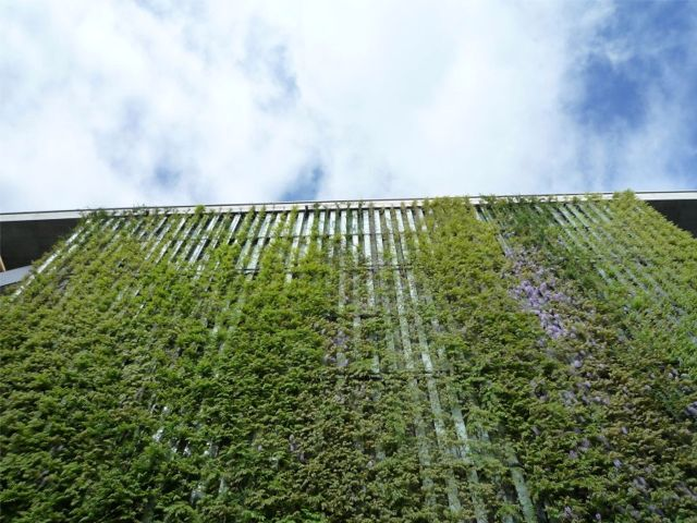 Greenroofs.com Project Week Sihlcity Shopping Centre Living Facade