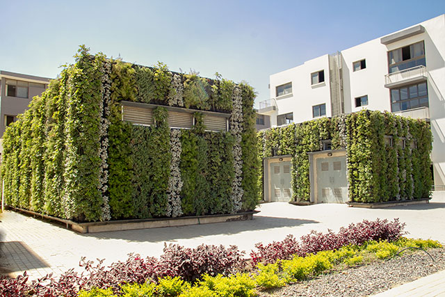 Greenroofs.com Project Tag Sultan Generator Room Green Walls