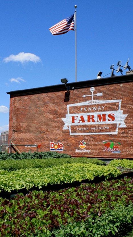 Fenway Farms