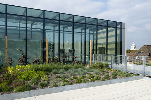 Irrigation of Intensive Green Roof Systems