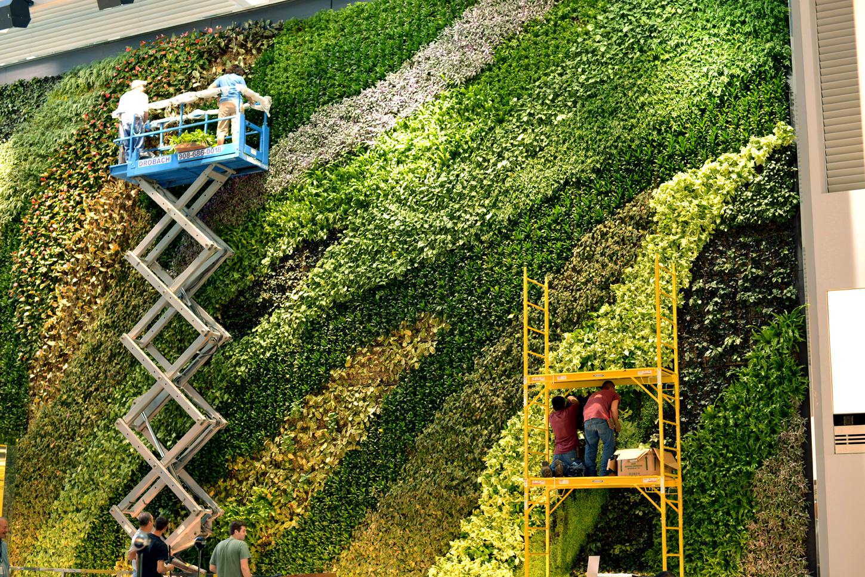 23 story atrium living wall - How to make a living wall ...